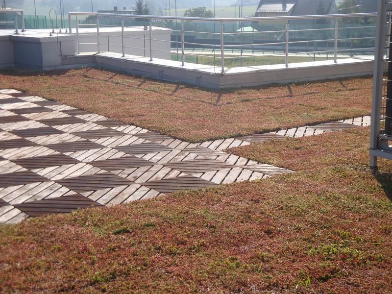 Zielony dach – kiedy brak Ci miejsca na dodatkową zieleń